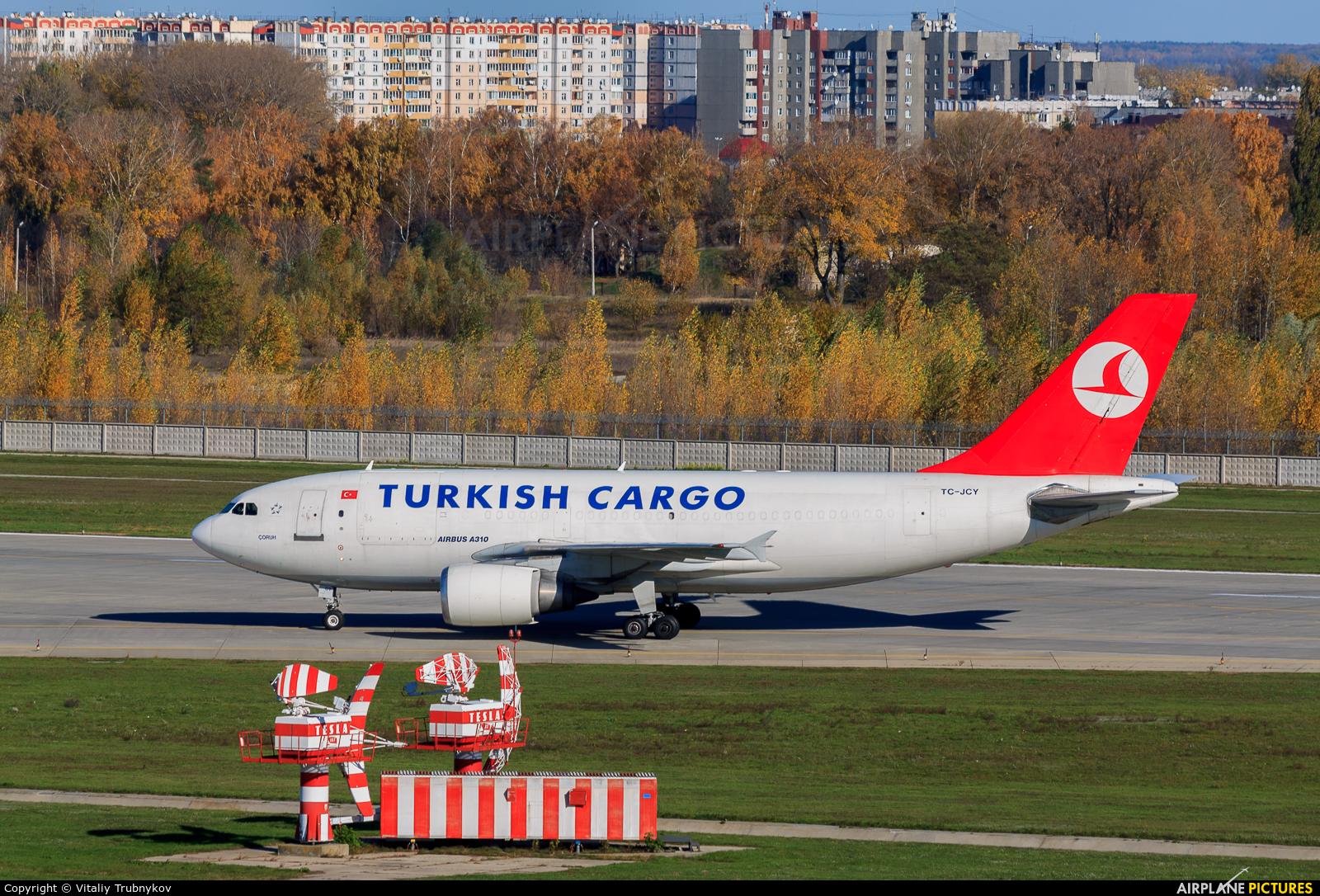 Turkish Cargo TC-JCY aircraft at Kiev - Borispol
