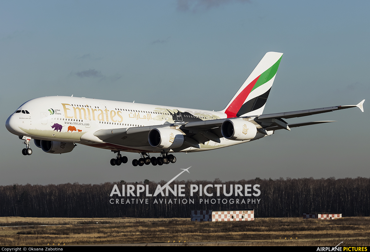Emirates Airlines A6-EER aircraft at Moscow - Domodedovo