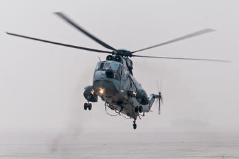 IN559 - India - Navy Westland Sea King Mk.42C