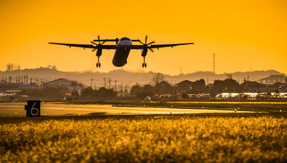 JA844C - JAL-  Japan Air Commuter de Havilland Canada DHC-8-400Q / Bombardier Q400