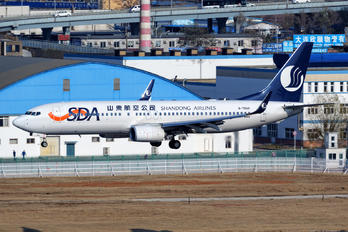 B-7809 - Shandong Airlines  Boeing 737-800