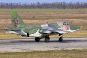 01 - Russia - Air Force Sukhoi Su-25 aircraft