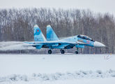 25 RED - Russia - Air Force Sukhoi Su-30SM aircraft