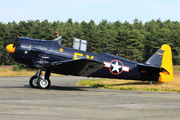 N13FY - Private North American Harvard/Texan (AT-6, 16, SNJ series) aircraft