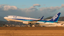 JA66AN - ANA - All Nippon Airways Boeing 737-800 aircraft