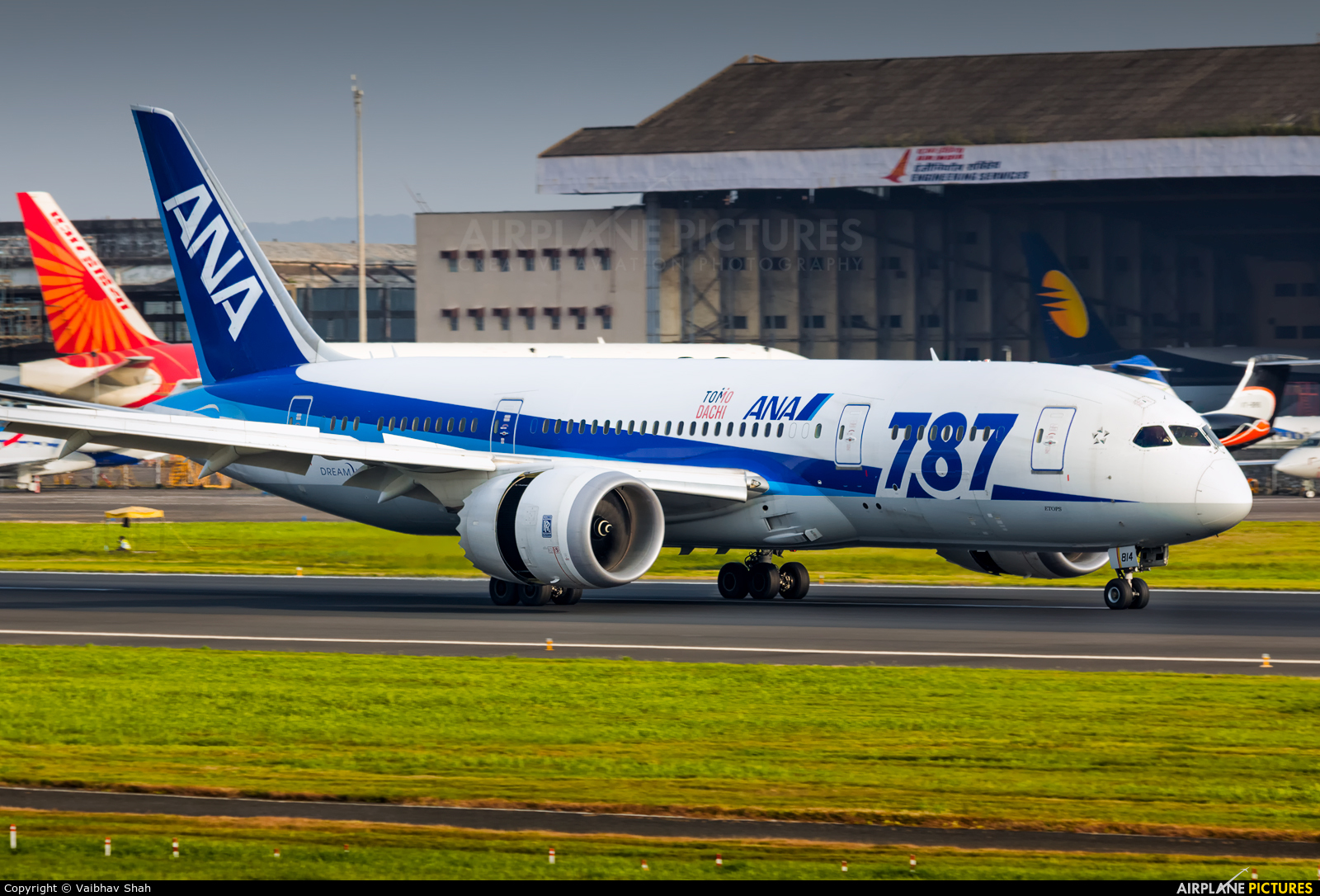 ANA - All Nippon Airways JA814A aircraft at Mumbai - Chhatrapati Shivaji Intl
