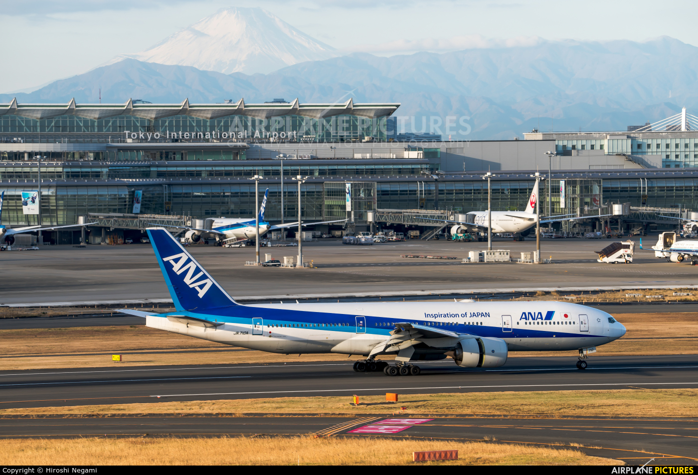 ANA - All Nippon Airways JA710A aircraft at Tokyo - Haneda Intl