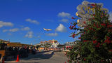 JetBudget Cessna 510 Citation Mustang PJ-DOM at Sint Maarten - Princess Juliana Intl airport