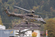 T-314 - Switzerland - Air Force Aerospatiale AS332 Super Puma aircraft
