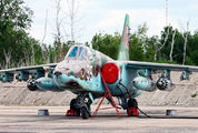35 - Belarus - Air Force Sukhoi Su-25 aircraft
