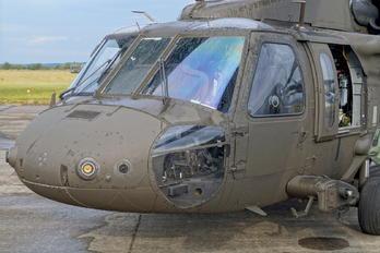 001 - Sweden - Air Force Sikorsky UH-60M Black Hawk