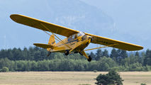 SP-AWP - Private Piper J3 Cub aircraft