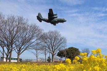 45-1074 - Japan - Air Self Defence Force Lockheed C-130H Hercules