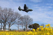 45-1074 - Japan - Air Self Defence Force Lockheed C-130H Hercules aircraft