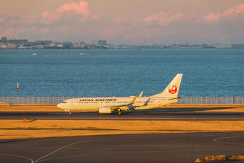 JA306J - JAL - Japan Airlines Boeing 737-800