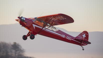 HB-ODC -  Piper L-4 Cub