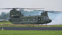 D-667 - Netherlands - Air Force Boeing CH-47D Chinook aircraft