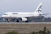 SX-DGF - Aegean Airlines Airbus A319 aircraft