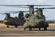52979 - Japan - Ground Self Defense Force Kawasaki CH-47J Chinook aircraft