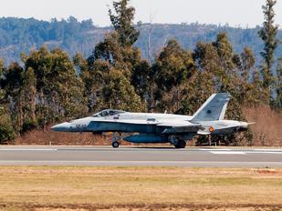 C.15-54 - Spain - Air Force McDonnell Douglas EF-18A Hornet