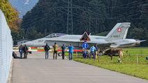 J-5007 - Switzerland - Air Force McDonnell Douglas F/A-18C Hornet aircraft