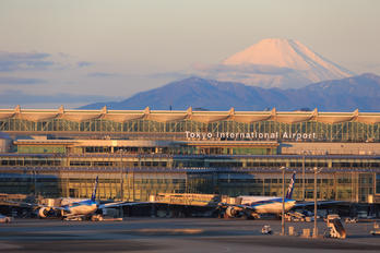 - - ANA - All Nippon Airways - Airport Overview - Overall View