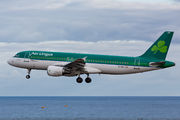 EI-DEH - Aer Lingus Airbus A320 aircraft