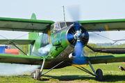 RF-01038 - DOSAAF / ROSTO Antonov An-2 aircraft