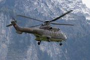 T-316 - Switzerland - Air Force Aerospatiale AS332 Super Puma aircraft