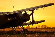 SP-ALI - Aeroklub Wroclawski Antonov An-2 aircraft