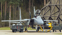 LN044 - USA - Air Force McDonnell Douglas F-15D Eagle aircraft