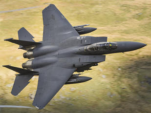 LN310 - USA - Air Force McDonnell Douglas F-15E Strike Eagle