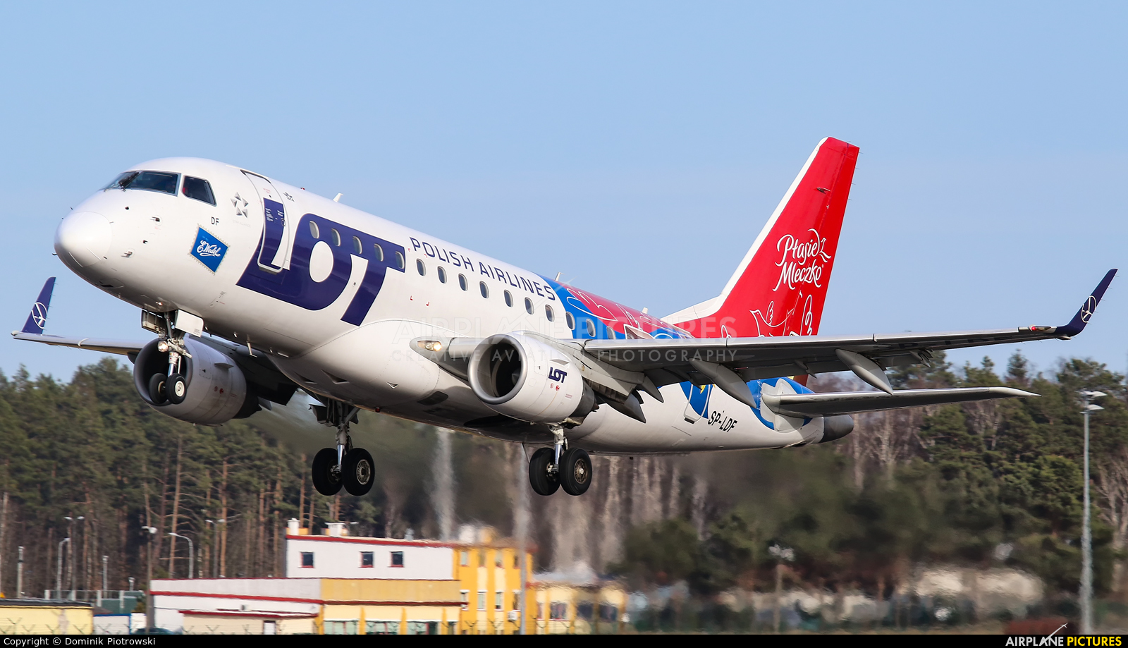 LOT - Polish Airlines SP-LDF aircraft at Gdańsk - Lech Wałęsa