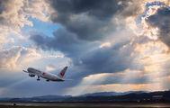 JA614J - JAL - Japan Airlines Boeing 767-300ER aircraft