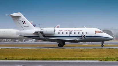 A37-003 - Royal Australian Air Force Canadair CL-600 Challenger 604