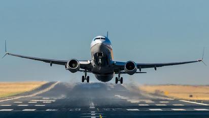 N14242 - United Airlines Boeing 737-800