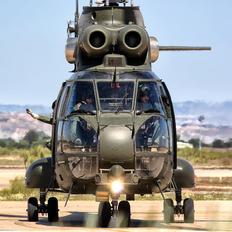 XW213 - Royal Air Force Westland Puma HC.1