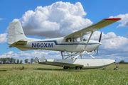 N60XM - Private Cessna 180 Skywagon (all models) aircraft
