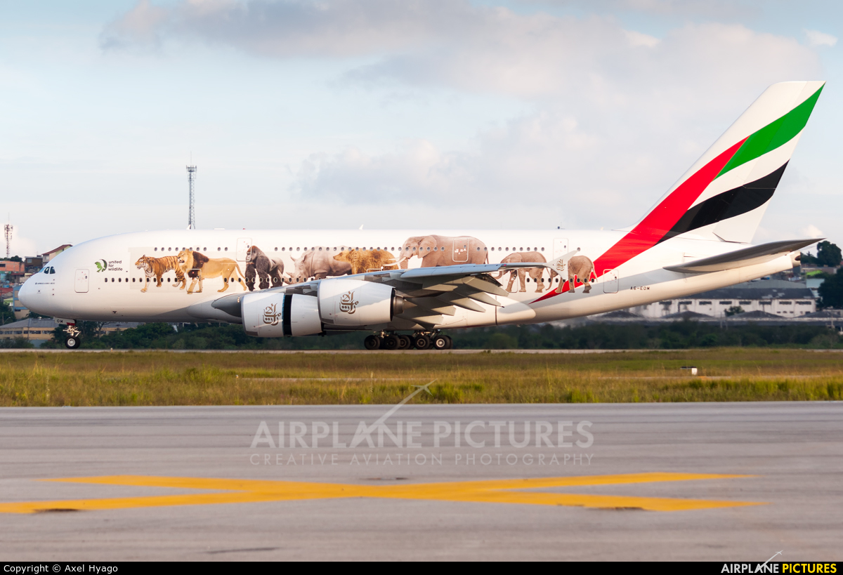 Emirates Airlines A6-EOM aircraft at São Paulo - Guarulhos