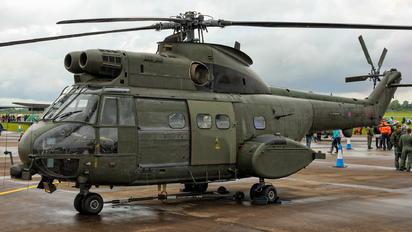 XW223 - Royal Air Force Westland Puma HC.1