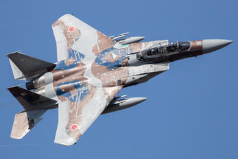 92-8095 - Japan - Air Self Defence Force Mitsubishi F-15DJ