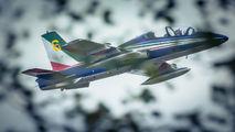 "6 - Italy - Air Force ""Frecce Tricolori"" Aermacchi MB-339A aircraft"