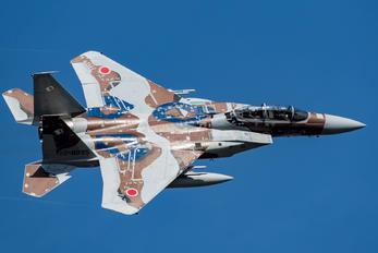 92-8095 - Japan - Air Self Defence Force Mitsubishi F-15DJ