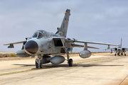 45+57 - Germany - Air Force Panavia Tornado - IDS aircraft
