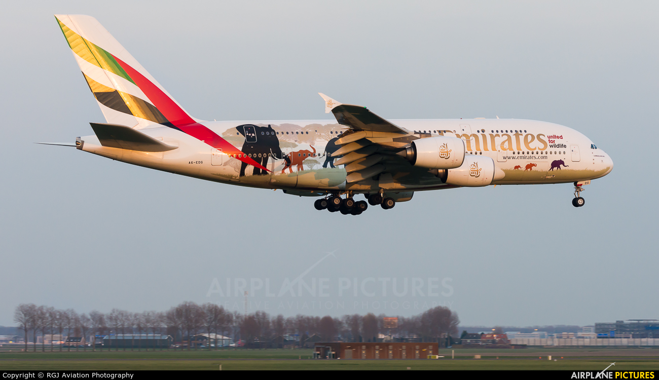 Emirates Airlines A6-EDG aircraft at Amsterdam - Schiphol