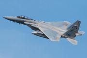 86-0162 - USA - Air National Guard McDonnell Douglas F-15C Eagle aircraft