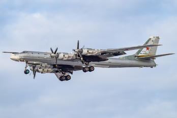 RF-94179 - Russia - Air Force Tupolev Tu-95MS