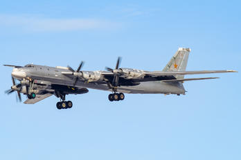 RF-94183 - Russia - Air Force Tupolev Tu-95MS