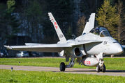 J-5234 - Switzerland - Air Force McDonnell Douglas F/A-18D Hornet aircraft
