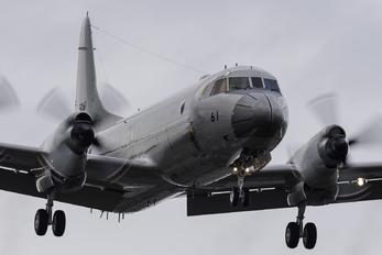 5061 - Japan - Maritime Self-Defense Force Lockheed P-3C Orion